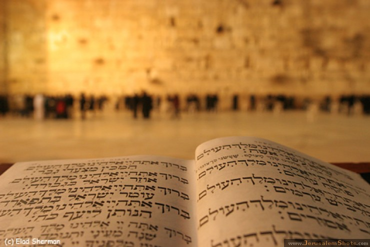 Torah-and-Wailing-Wall